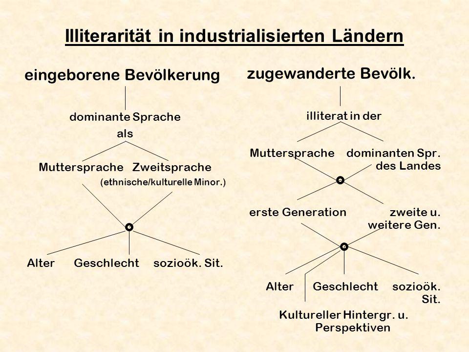 Illiterarität in industrialisierten Ländern eingeborene Bevölkerung dominante Sprache als MutterspracheZweitsprache (ethnische/kulturelle Minor.) Alte
