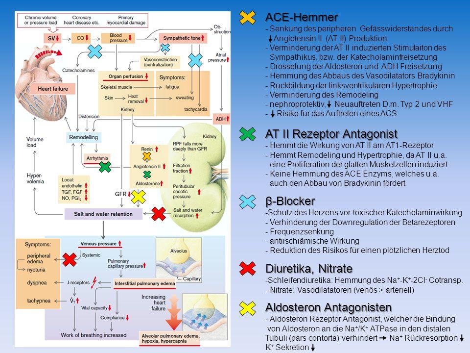 Aldosteron Antagonisten - Aldosteron Rezeptor Antagonist, welcher die Bindung von Aldosteron an die Na + /K + ATPase in den distalen Tubuli (pars contorta) verhindert Na + Rückresorption K + Sekretion β-Blocker -Schutz des Herzens vor toxischer Katecholaminwirkung - Verhinderung der Downregulation der Betarezeptoren - Frequenzsenkung - antiischiämische Wirkung - Reduktion des Risikos für einen plötzlichen Herztod Diuretika, Nitrate -Schleifendiuretika: Hemmung des Na + -K + -2Cl - Cotransp.