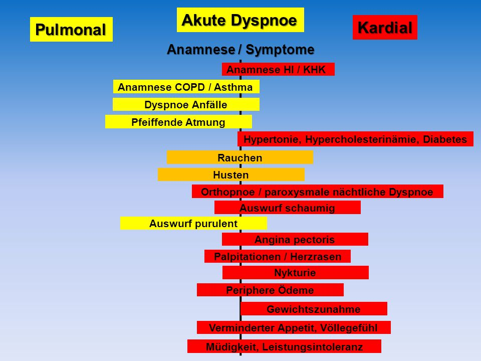 Akute Dyspnoe Pulmonal Kardial Anamnese HI / KHK Anamnese COPD / Asthma Dyspnoe Anfälle Pfeiffende Atmung Hypertonie, Hypercholesterinämie, Diabetes Rauchen Husten Orthopnoe / paroxysmale nächtliche Dyspnoe Auswurf schaumig Auswurf purulent Angina pectoris Palpitationen / Herzrasen Nykturie Periphere Ödeme Gewichtszunahme Verminderter Appetit, Völlegefühl Müdigkeit, Leistungsintoleranz Anamnese / Symptome