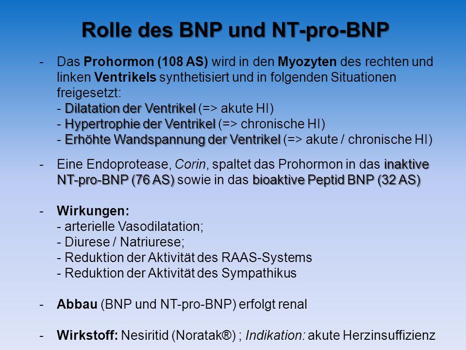 -Das Prohormon (108 AS) wird in den Myozyten des rechten und linken Ventrikels synthetisiert und in folgenden Situationen freigesetzt: Dilatation der