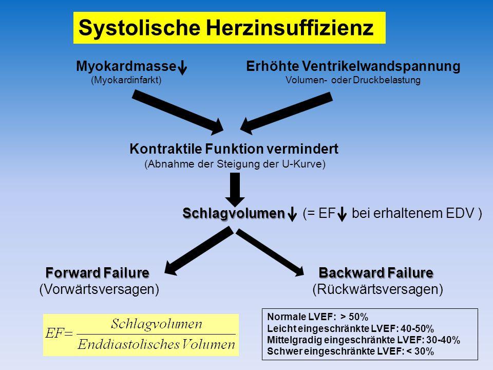 Systolische Herzinsuffizienz Schlagvolumen Schlagvolumen (= EF bei erhaltenem EDV ) Forward Failure (Vorwärtsversagen) Kontraktile Funktion vermindert (Abnahme der Steigung der U-Kurve) Erhöhte Ventrikelwandspannung Volumen- oder Druckbelastung Backward Failure (Rückwärtsversagen) Myokardmasse (Myokardinfarkt) Normale LVEF: > 50% Leicht eingeschränkte LVEF: 40-50% Mittelgradig eingeschränkte LVEF: 30-40% Schwer eingeschränkte LVEF: < 30%
