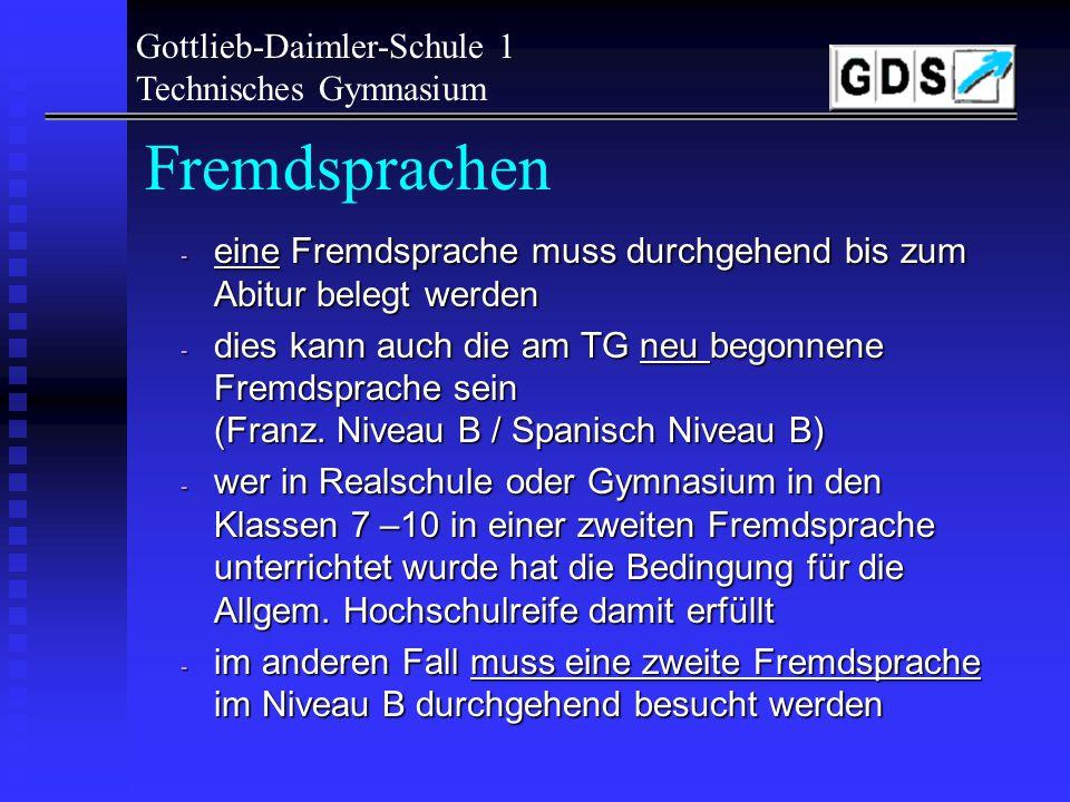 Gottlieb-Daimler-Schule 1 Technisches Gymnasium Eingangsstufe: - Eingangsstufe als Anpassungsstufe - SchülerInnen kommen aus verschiedenen Schulen und
