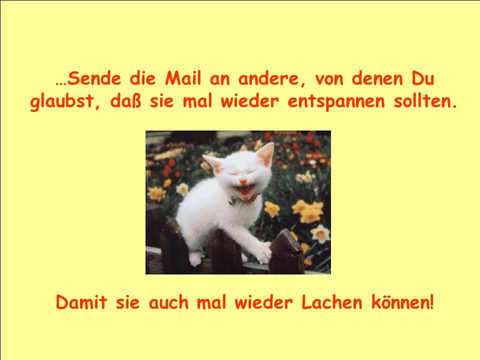 …Sende die Mail an andere, von denen Du glaubst, daß sie mal wieder entspannen sollten. Damit sie auch mal wieder Lachen können!
