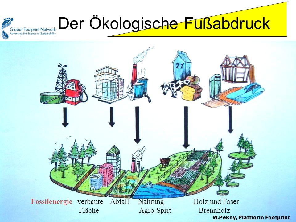 Footprint components Fossilenergie verbaute Abfall Nahrung Holz und Faser Fläche Agro-Sprit Brennholz Der Ökologische Fußabdruck W.Pekny, Plattform Footprint