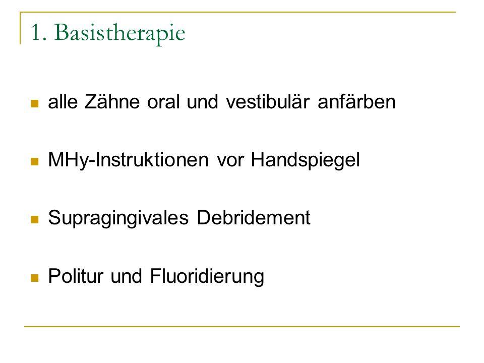 1. Basistherapie alle Zähne oral und vestibulär anfärben MHy-Instruktionen vor Handspiegel Supragingivales Debridement Politur und Fluoridierung