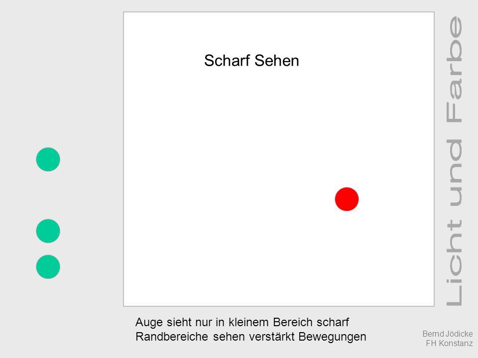 Scharf Sehen Auge sieht nur in kleinem Bereich scharf Randbereiche sehen verstärkt Bewegungen Bernd Jödicke FH Konstanz