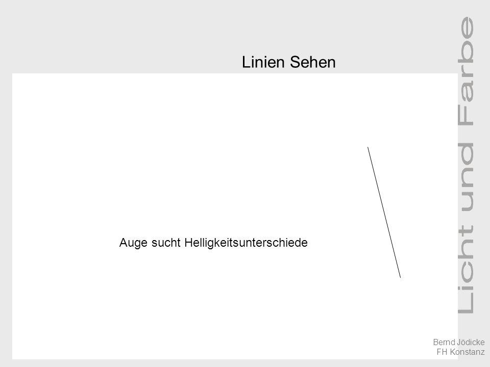 Linien Sehen Auge sucht Helligkeitsunterschiede Bernd Jödicke FH Konstanz