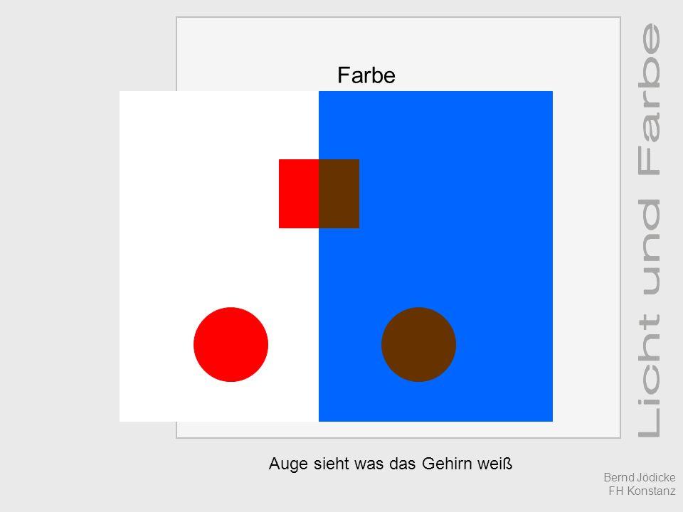 Auge sieht was das Gehirn weiß Farbe Bernd Jödicke FH Konstanz