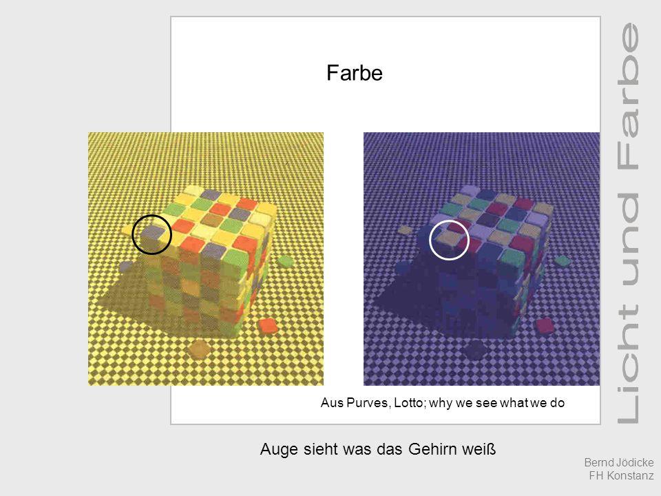 Auge sieht was das Gehirn weiß Farbe Aus Purves, Lotto; why we see what we do Bernd Jödicke FH Konstanz