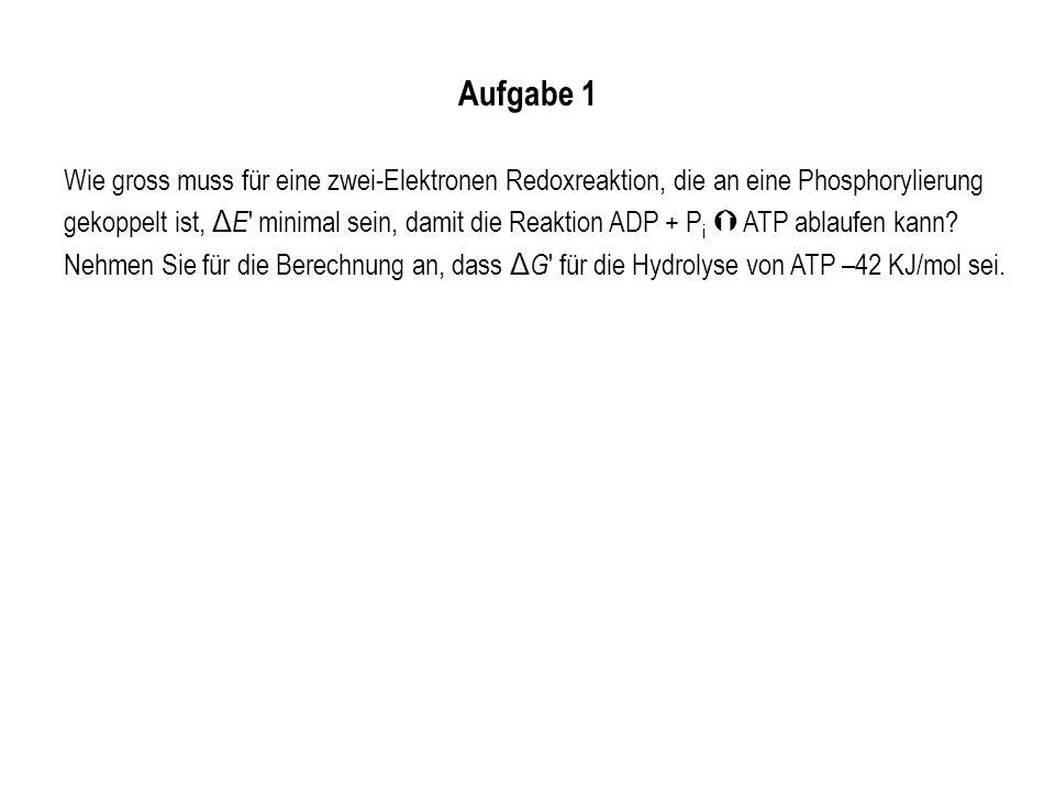 Aufgabe 1 Wie gross muss für eine zwei-Elektronen Redoxreaktion, die an eine Phosphorylierung gekoppelt ist, Δ E ' minimal sein, damit die Reaktion AD