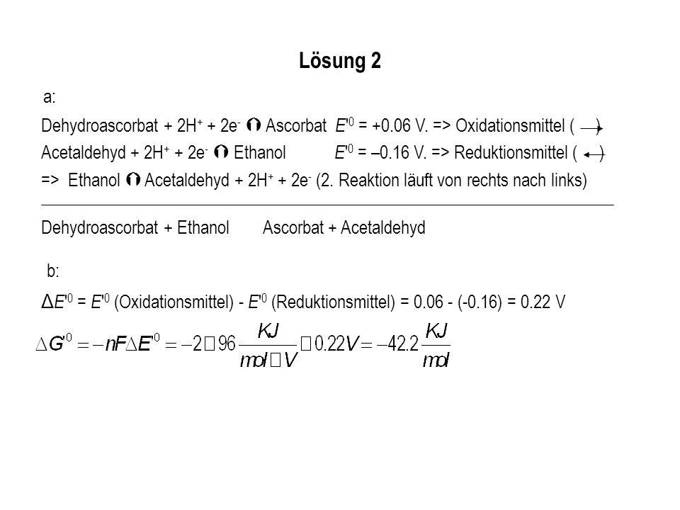 Dehydroascorbat + 2H + + 2e - Ascorbat E ' 0 = +0.06 V. => Oxidationsmittel ( ) Acetaldehyd + 2H + + 2e - Ethanol E ' 0 = –0.16 V. => Reduktionsmittel