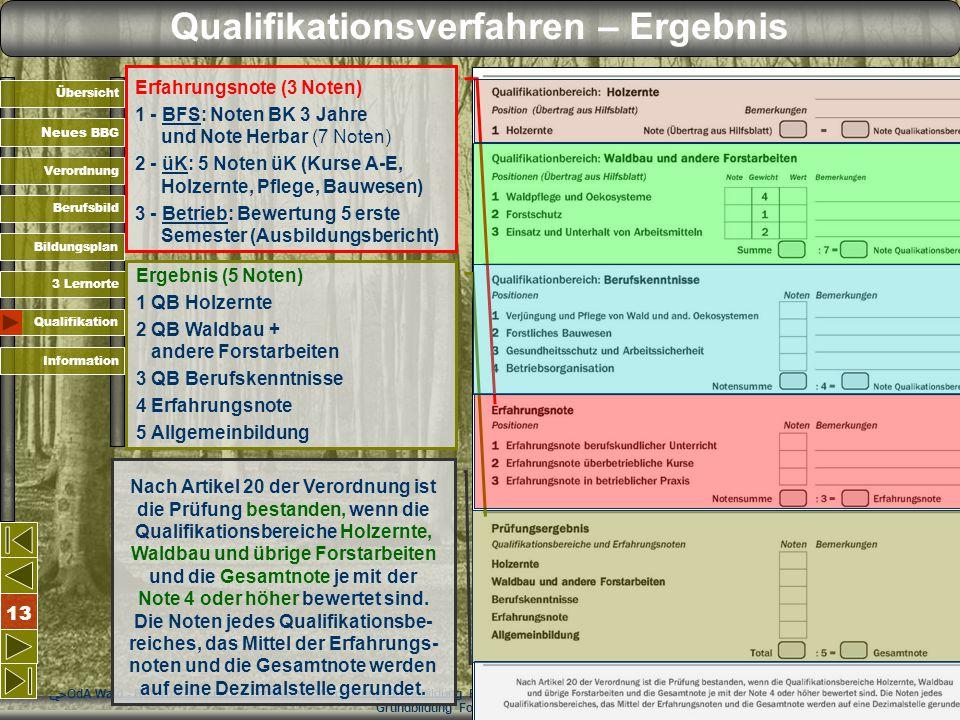 OdA Wald - Reformkommission Forstwart - Verordnung Grundbildung Forstwartin/Forstwart OdA Wald - Reformkommission Forstwart - Verordnung Grundbildung