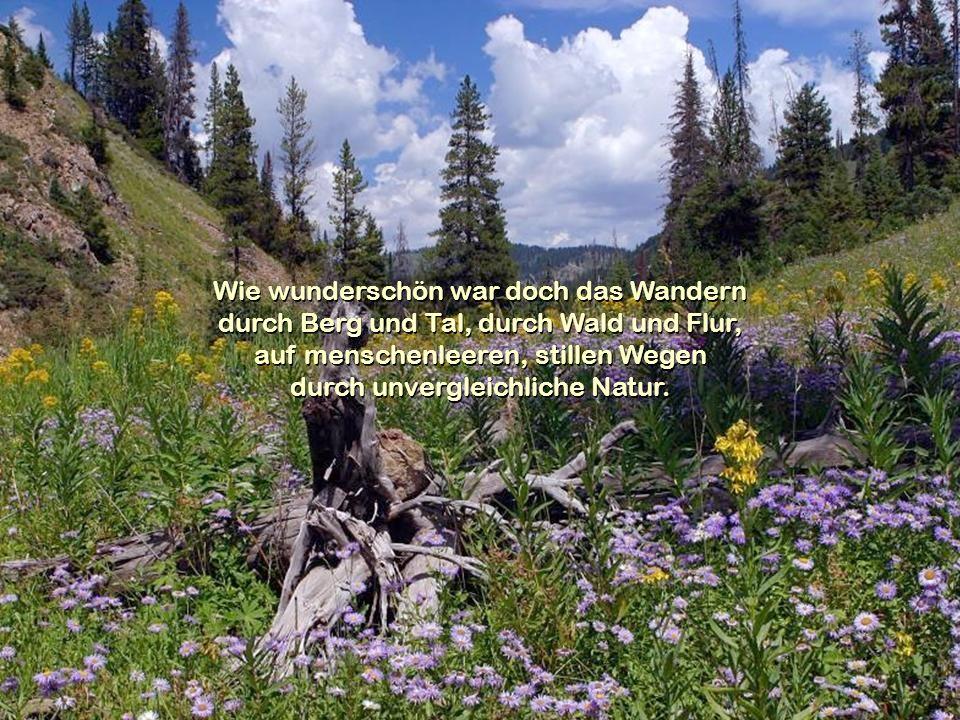 Wie wunderschön war doch das Wandern durch Berg und Tal, durch Wald und Flur, auf menschenleeren, stillen Wegen durch unvergleichliche Natur.