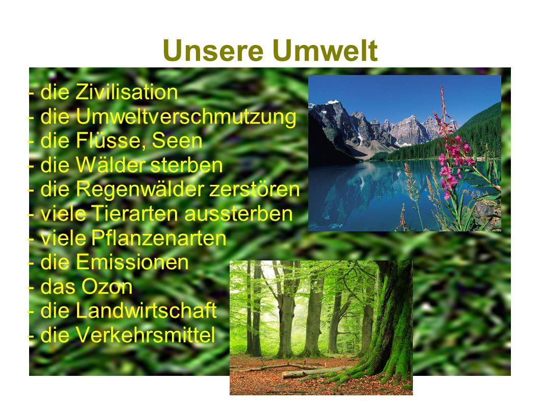 Unsere Umwelt - die Zivilisation - die Umweltverschmutzung - die Flüsse, Seen - die Wälder sterben - die Regenwälder zerstören - viele Tierarten ausst
