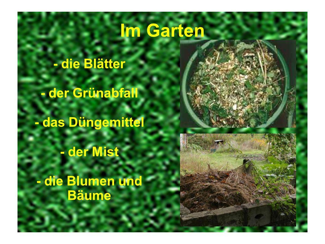 Im Garten - die Blätter - der Grünabfall - das Düngemittel - der Mist - die Blumen und Bäume