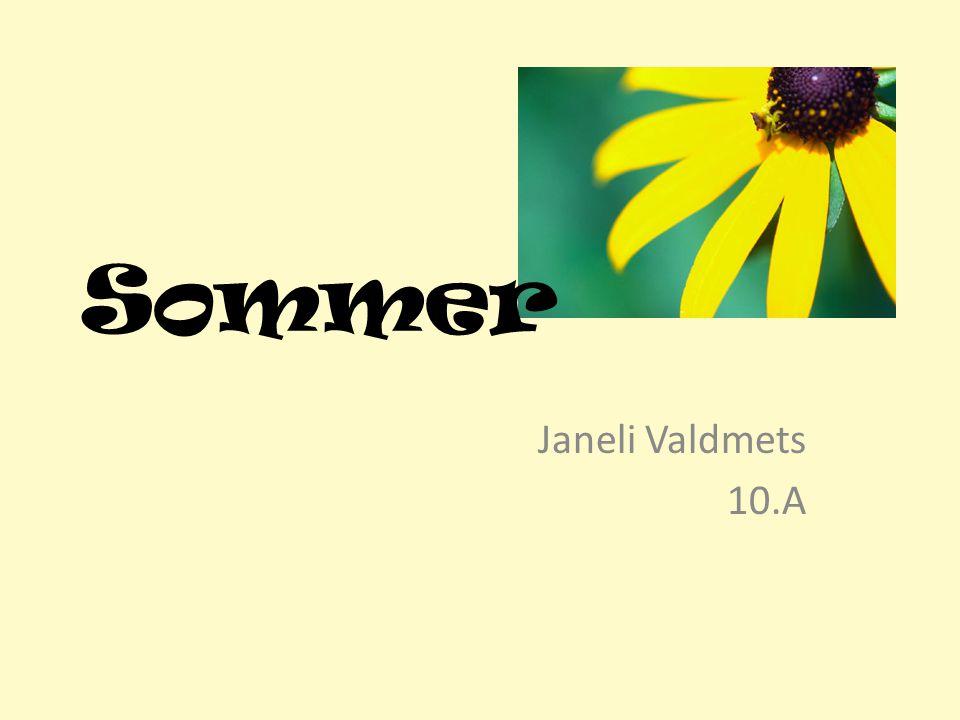 Sommer Janeli Valdmets 10.A