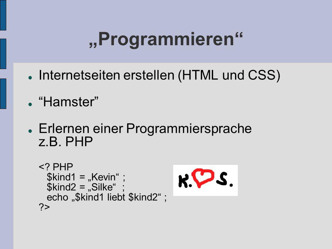 Programmieren Internetseiten erstellen (HTML und CSS) Hamster Erlernen einer Programmiersprache z.B. PHP