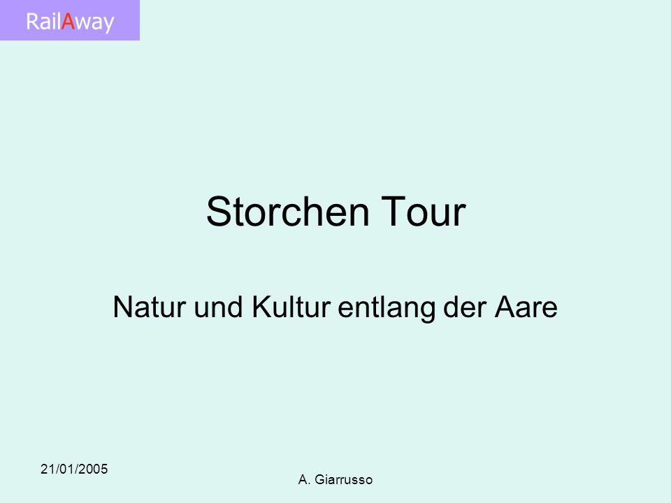 RailAway 21/01/2005 A. Giarrusso Storchen Tour Natur und Kultur entlang der Aare