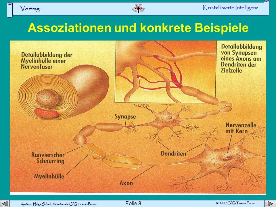 Vortrag Autorin Helga Scholz, Vorsitzende GfG TrainerForum © 2007 GfG-TrainerForum Folie 7 Normale Synapse Beispiel ^Vermehrung der Vesikel Vergrößeru