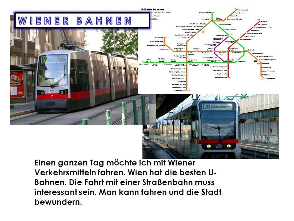 Ich möchte meine Sommerferien in Wien verbringen.