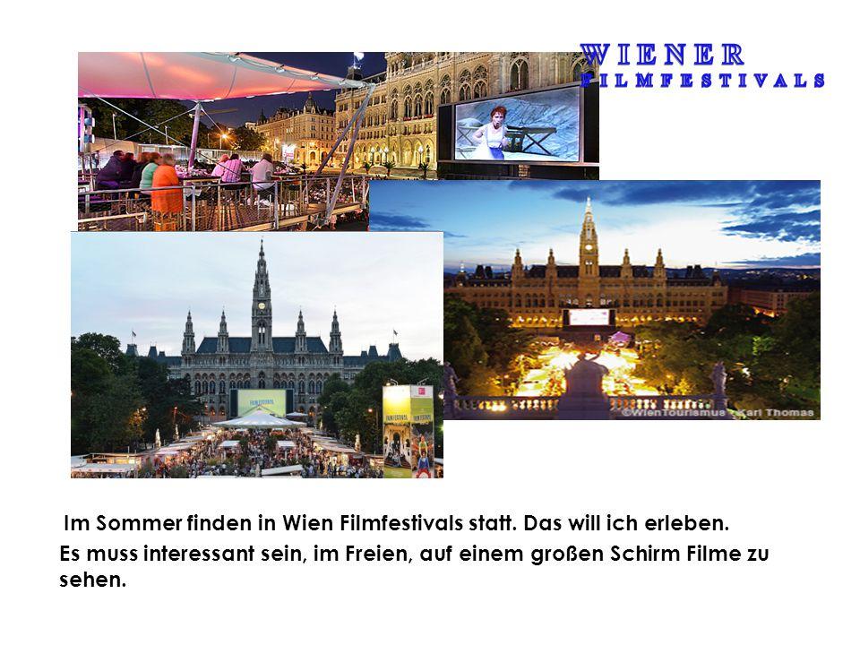 Einen ganzen Tag möchte ich mit Wiener Verkehrsmitteln fahren.