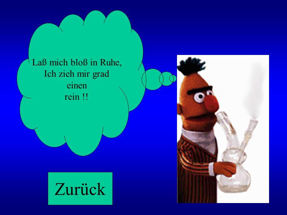 PSSSST, Ernie kann grad nicht! Zurück