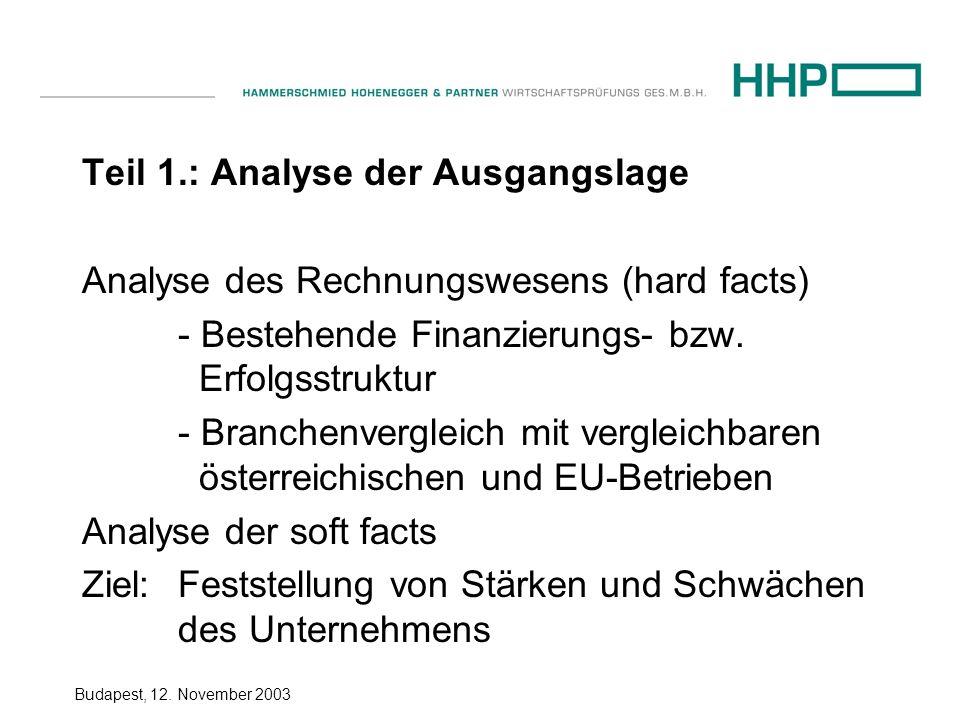 Budapest, 12. November 2003 Teil 1.: Analyse der Ausgangslage Analyse des Rechnungswesens (hard facts) - Bestehende Finanzierungs- bzw. Erfolgsstruktu