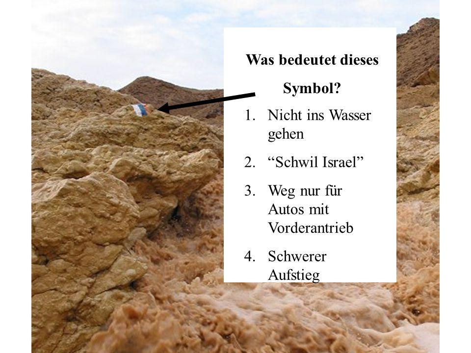 Dies ist das Zeichen Von Schwil Israel, einem Wanderweg, der bei Nachal Dan im Norden des Landes beginnt und am Zfachot-Berg im Süden endet.