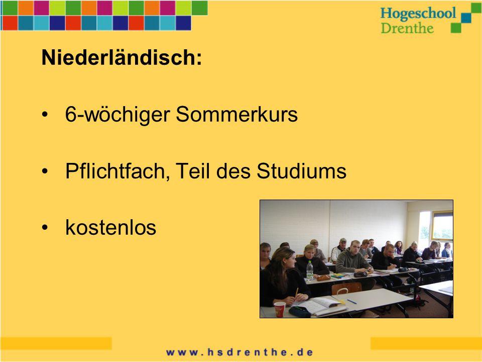 Niederländisch: 6-wöchiger Sommerkurs Pflichtfach, Teil des Studiums kostenlos