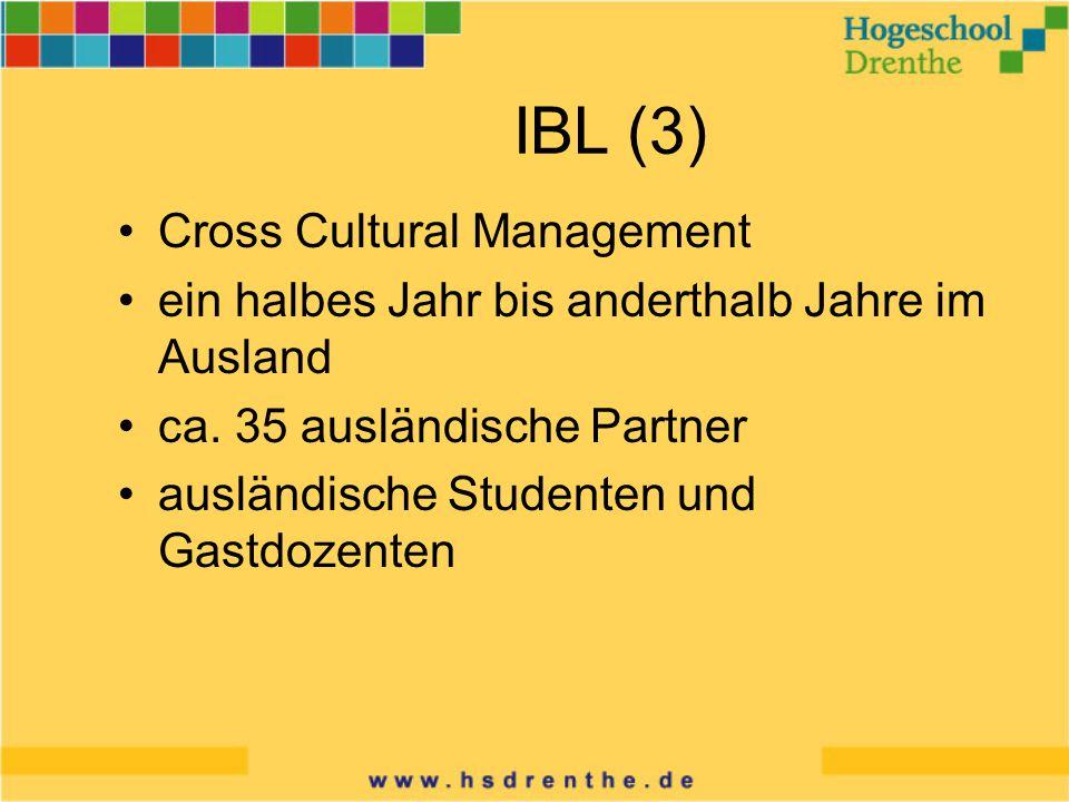 IBL (3) Cross Cultural Management ein halbes Jahr bis anderthalb Jahre im Ausland ca.