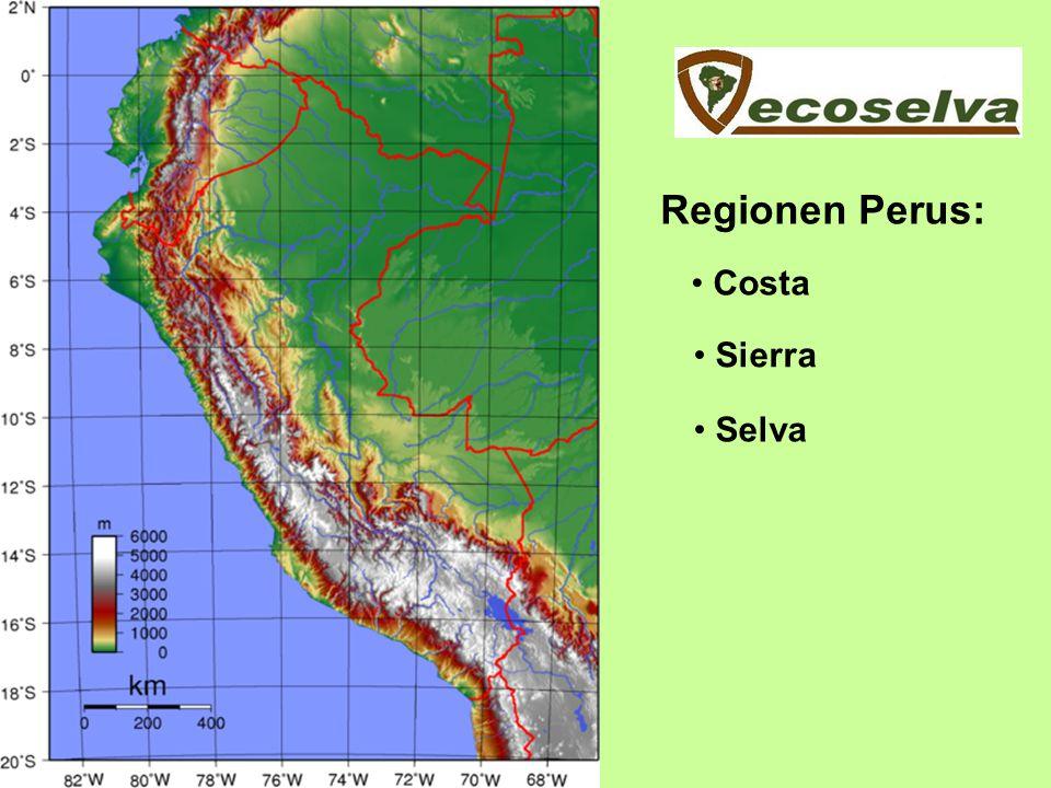 Regionen Perus: Costa Sierra Selva