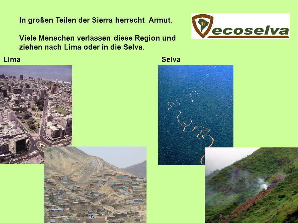 In großen Teilen der Sierra herrscht Armut. Viele Menschen verlassen diese Region und ziehen nach Lima oder in die Selva. LimaSelva