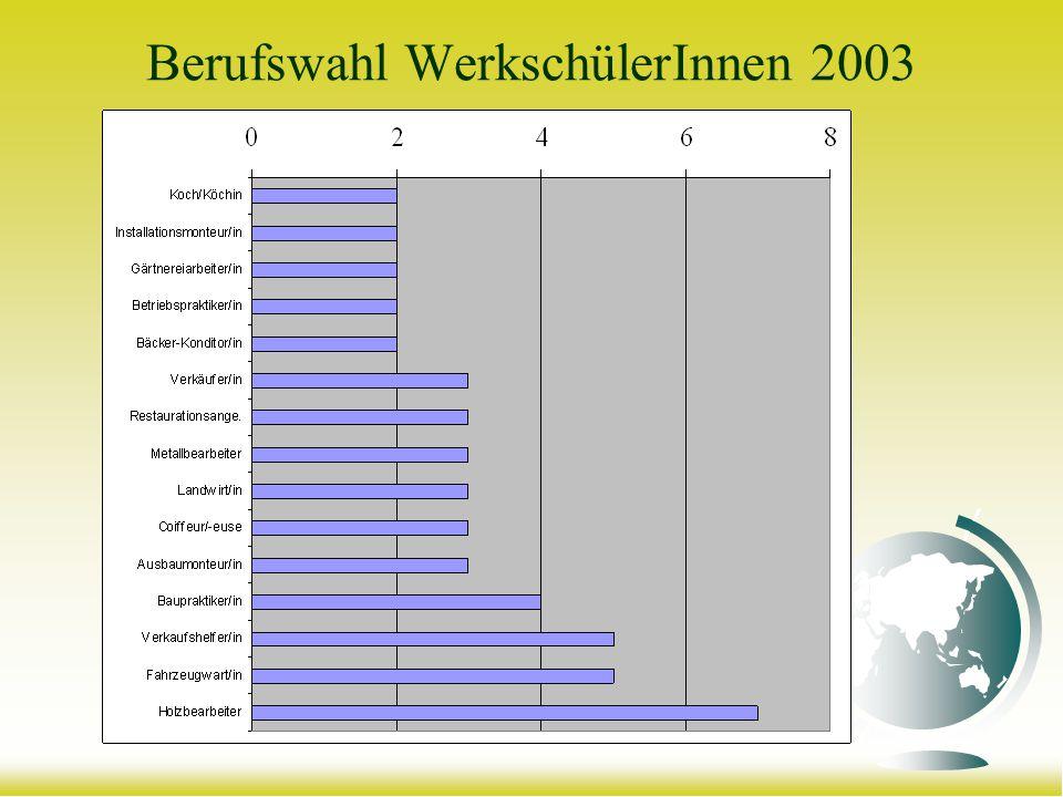 Berufswahl WerkschülerInnen 2003