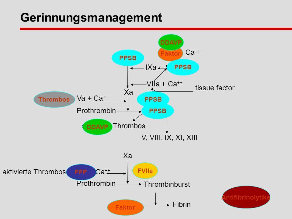 Xa Thrombos + Va + Ca ++ Prothrombin thrombin VII tissue factor aktivierte Thrombos V, VIII, IX, XI, XIII Fibrin Fibrinogen Xa aktivierte Thrombos + Va + Ca ++ Prothrombin Thrombinburst Gerinnungsmanagement X Xa VIIIa + Ca ++ IX IXa VIIa + Ca ++ VII FVIIa Faktor Thrombos PPSB Antifibrinolytika FFP DDAVP Faktor