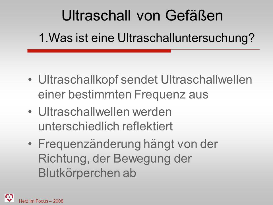 Herz im Focus – 2008 Ultraschall von Gefäßen Ultraschallkopf sendet Ultraschallwellen einer bestimmten Frequenz aus Ultraschallwellen werden unterschi