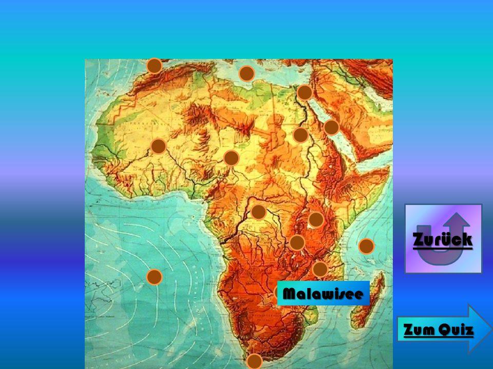 Malawisee Zurück Zum Quiz Zum Quiz