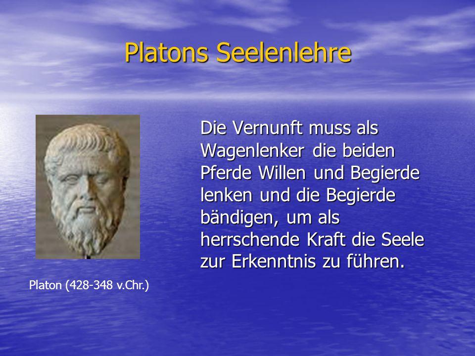 Platons Seelenlehre Die Vernunft muss als Wagenlenker die beiden Pferde Willen und Begierde lenken und die Begierde bändigen, um als herrschende Kraft