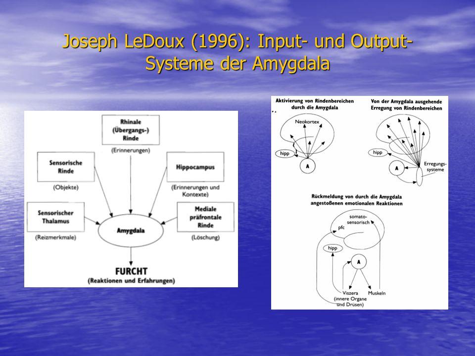 Joseph LeDoux (1996): Input- und Output- Systeme der Amygdala