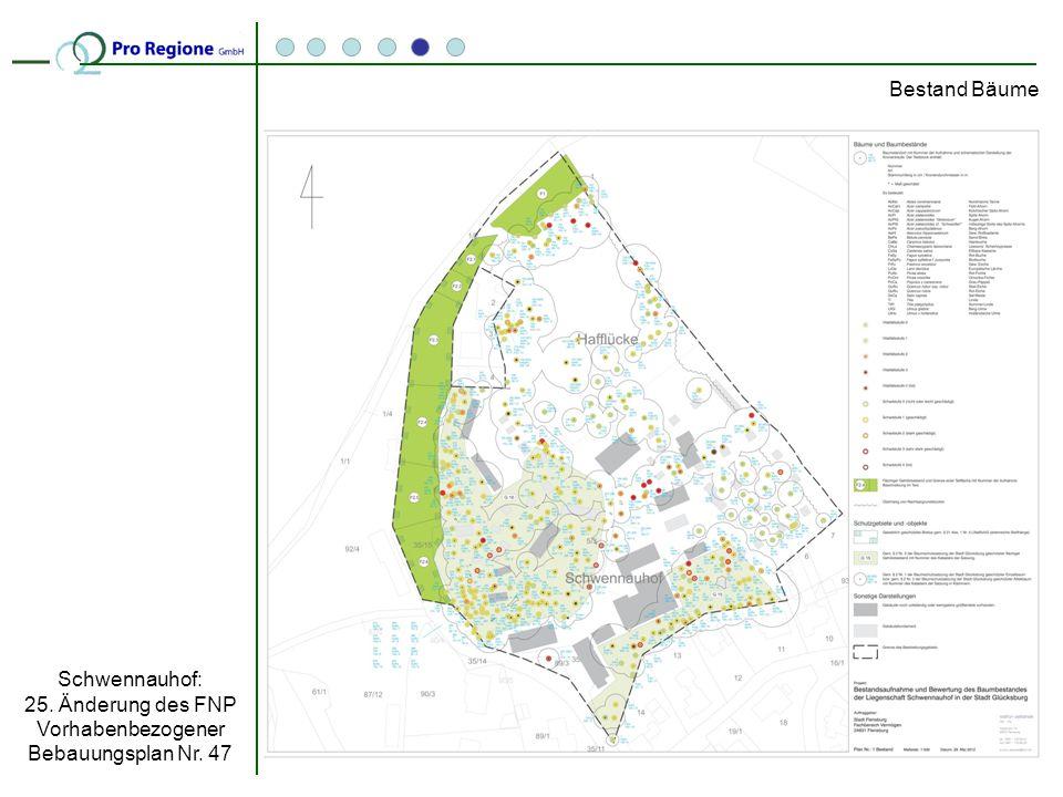 Bestand Bäume Schwennauhof: 25. Änderung des FNP Vorhabenbezogener Bebauungsplan Nr. 47