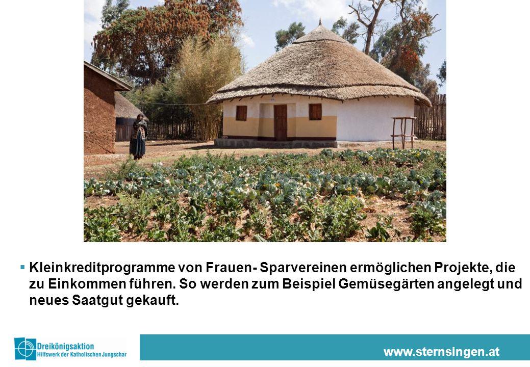 www.sternsingen.at  Kleinkreditprogramme von Frauen- Sparvereinen ermöglichen Projekte, die zu Einkommen führen. So werden zum Beispiel Gemüsegärten