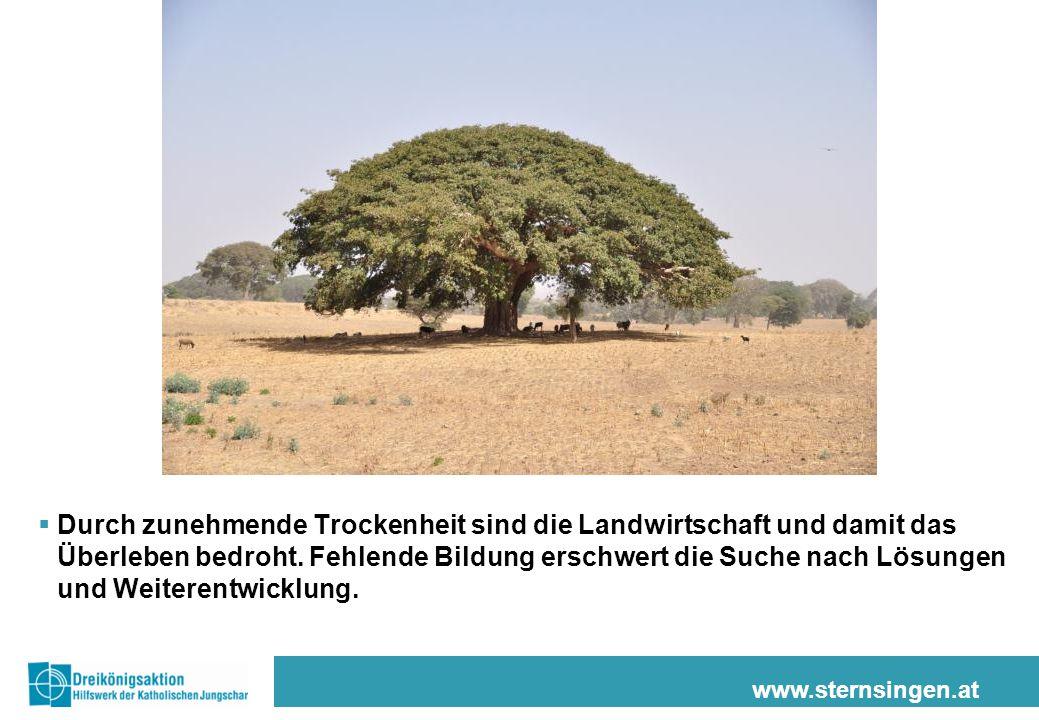 www.sternsingen.at  Durch zunehmende Trockenheit sind die Landwirtschaft und damit das Überleben bedroht. Fehlende Bildung erschwert die Suche nach L
