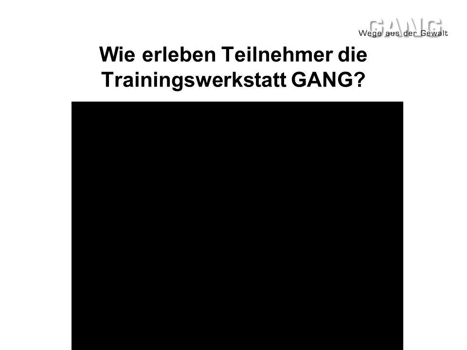 Wie erleben Teilnehmer die Trainingswerkstatt GANG?