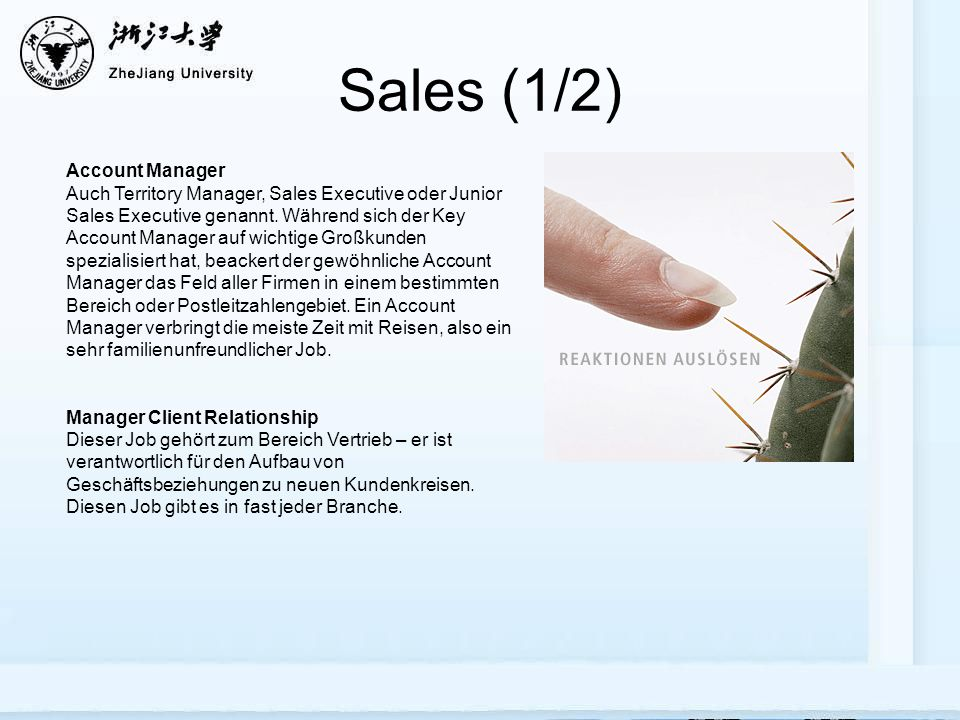 Sales (1/2) Account Manager Auch Territory Manager, Sales Executive oder Junior Sales Executive genannt.