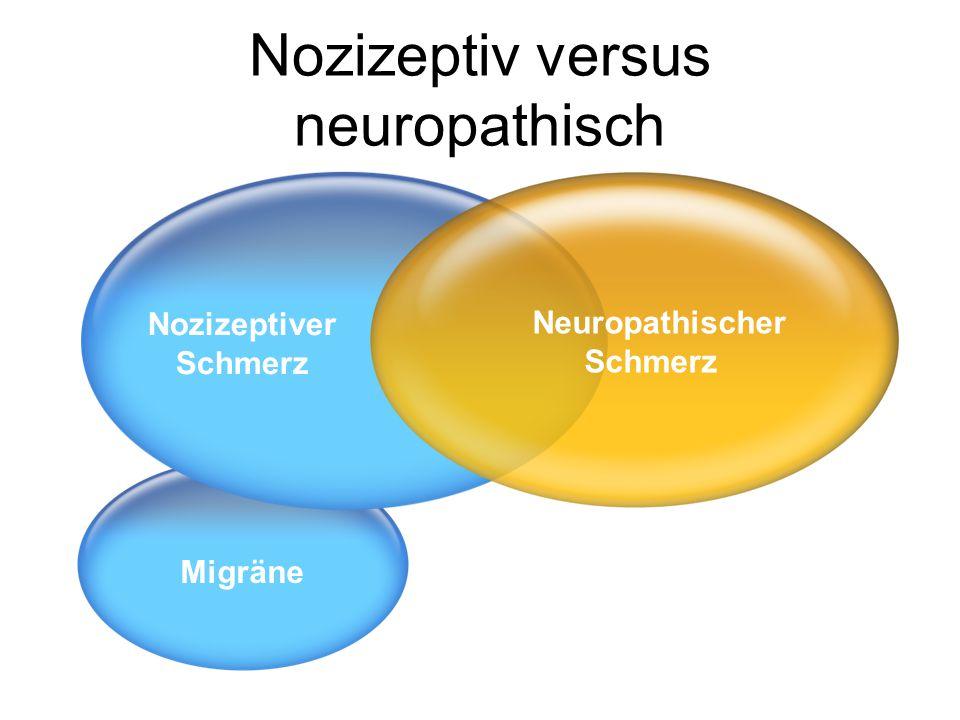 Der nozizeptive Schmerz: Symptome • Klopfen • Stechen • Steifheit Nozizeptiver Schmerz Durch eine inflammatorische oder nicht nichtinflammatorische Antwort auf einen noxischen Stimulus verursachter Schmerz