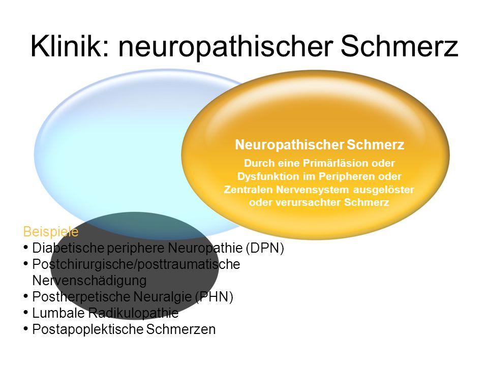Klinik: neuropathischer Schmerz Beispiele • Diabetische periphere Neuropathie (DPN) • Postchirurgische/posttraumatische Nervenschädigung • Postherpetische Neuralgie (PHN) • Lumbale Radikulopathie • Postapoplektische Schmerzen Neuropathischer Schmerz Durch eine Primärläsion oder Dysfunktion im Peripheren oder Zentralen Nervensystem ausgelöster oder verursachter Schmerz