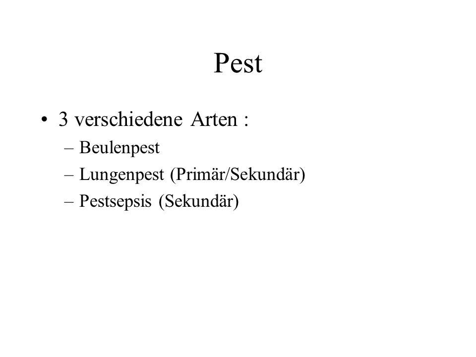 Pest •3 verschiedene Arten : –Beulenpest –Lungenpest (Primär/Sekundär) –Pestsepsis (Sekundär)
