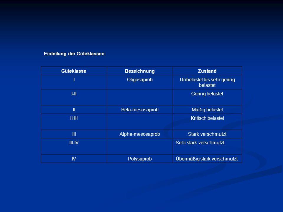 Einteilung der Güteklassen: GüteklasseBezeichnungZustand IOligosaprobUnbelastet bis sehr gering belastet I-IIGering belastet IIBeta-mesosaprobMäßig be