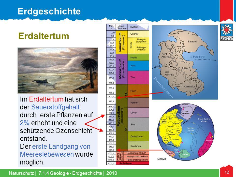 Naturschutz   12 Im Erdaltertum hat sich der Sauerstoffgehalt durch erste Pflanzen auf 2% erhöht und eine schützende Ozonschicht entstand. Der erste L