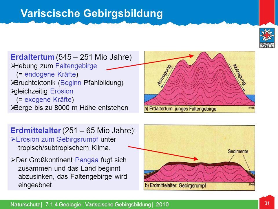Naturschutz | 31 Erdaltertum (545 – 251 Mio Jahre)  Hebung zum Faltengebirge (= endogene Kräfte)  Bruchtektonik (Beginn Pfahlbildung)  gleichzeitig