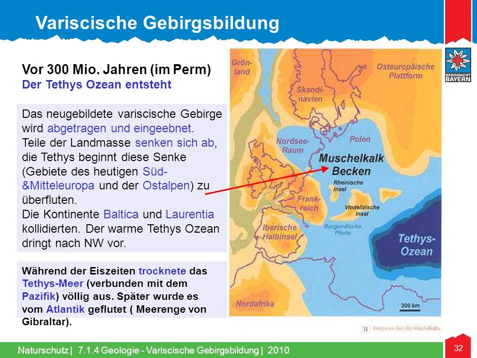 Naturschutz   32 Das neugebildete variscische Gebirge wird abgetragen und eingeebnet. Teile der Landmasse senken sich ab, die Tethys beginnt diese Sen